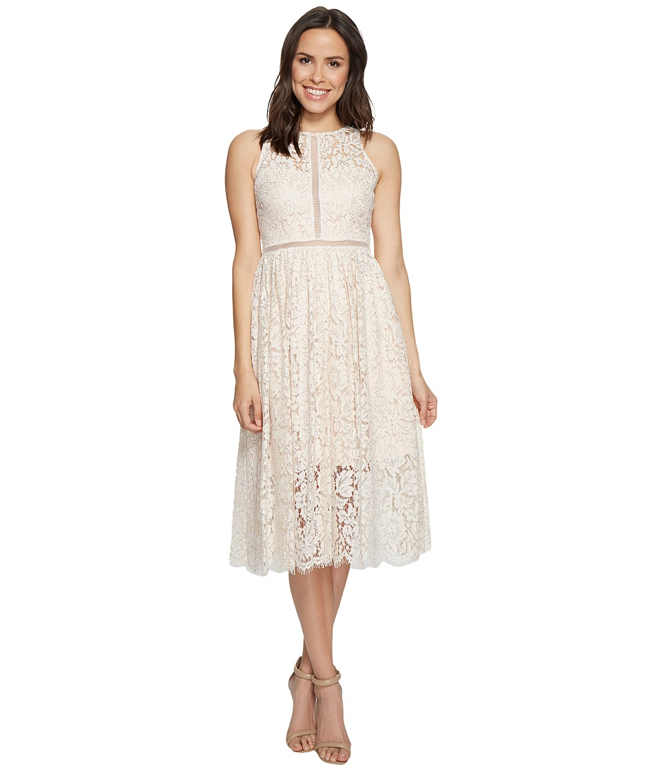 Adrianna Papell - Halter Lace Tea Length Party Dress (Blush) Women's Dress