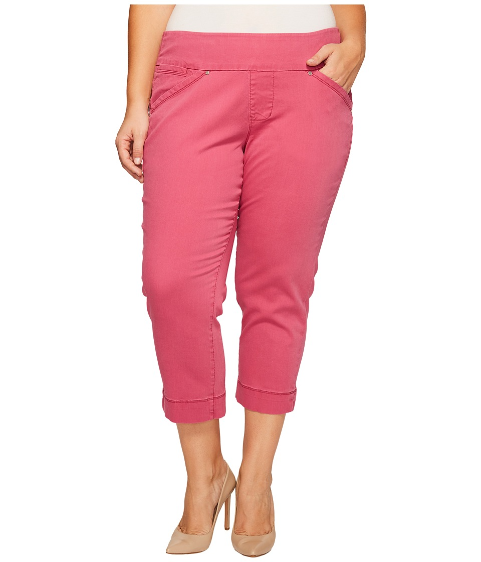 Jag Jeans Plus Size - Plus Size Marion Crop in Bay Twill (Pink Geranium) Women's Casual Pants