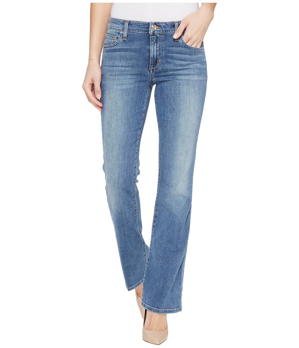 Joe's Jeans - Provocateur Petite Bootcut in Vani (Vani) Women's Jeans