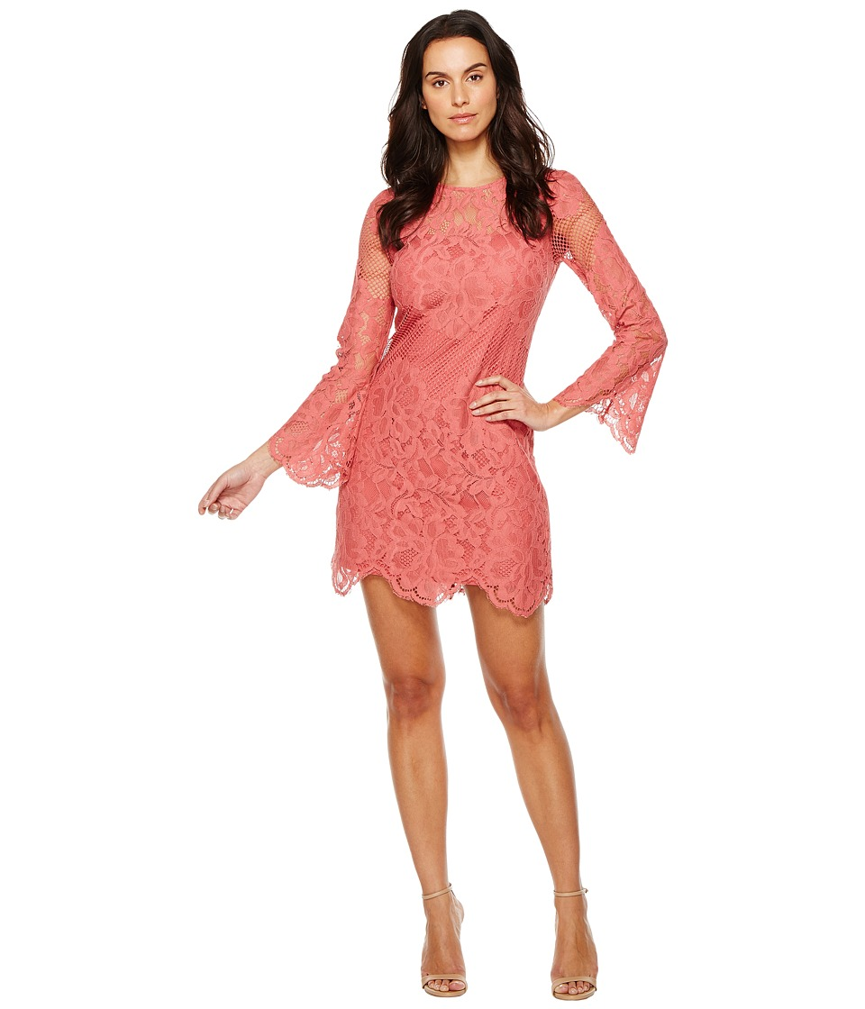Donna Morgan - A-Line Lace Dress (Clay Red) Women's Dress