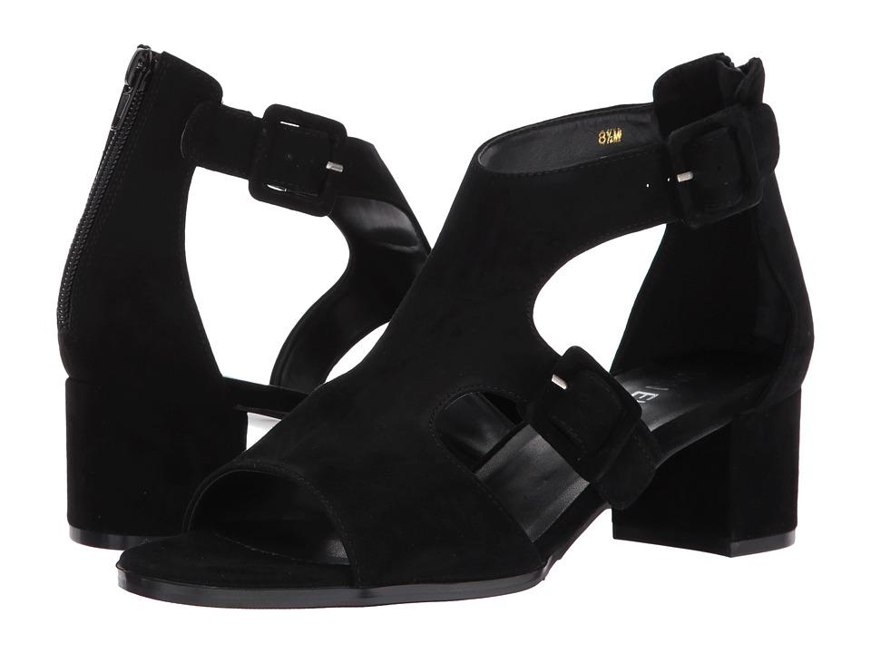 Vaneli - Oread (Black Suede) Women's 1-2 inch heel Shoes