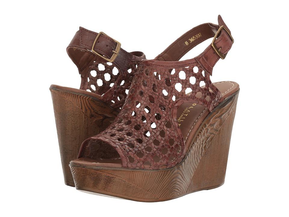 VOLATILE Inventive (Brown) Women