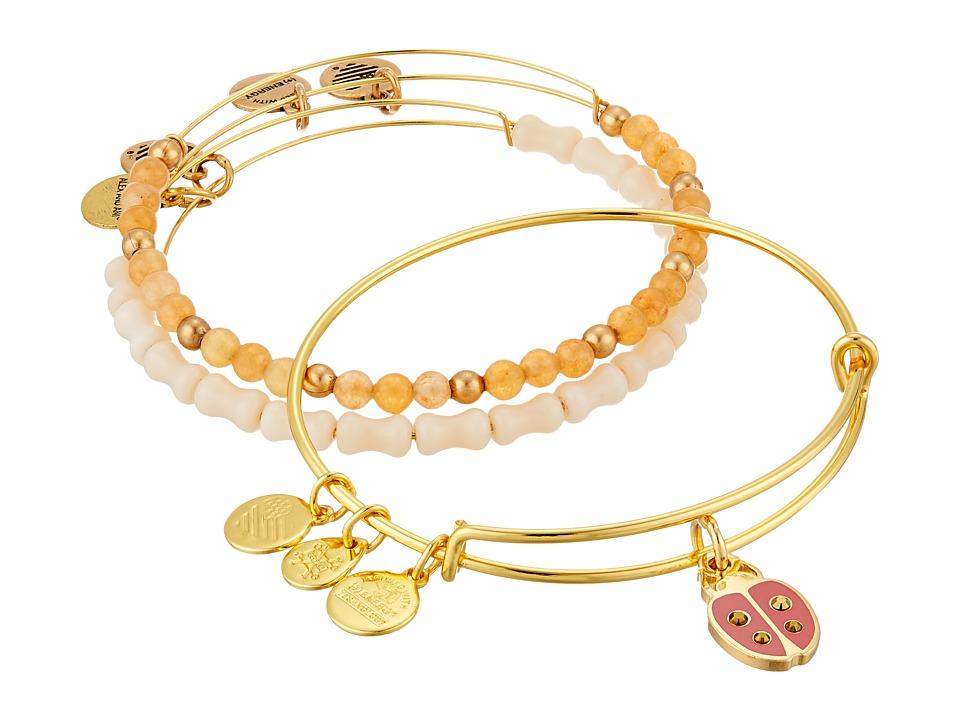 Alex and Ani - Cosmic Messages - Ladybug Set of 3 Charm Bangle (Rafaelian Silver) Bracelet