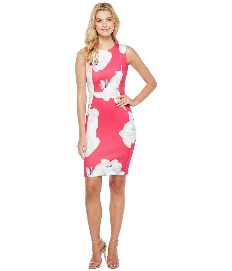 Calvin Klein Floral Sheath Dress (Hibiscus Multi) Women