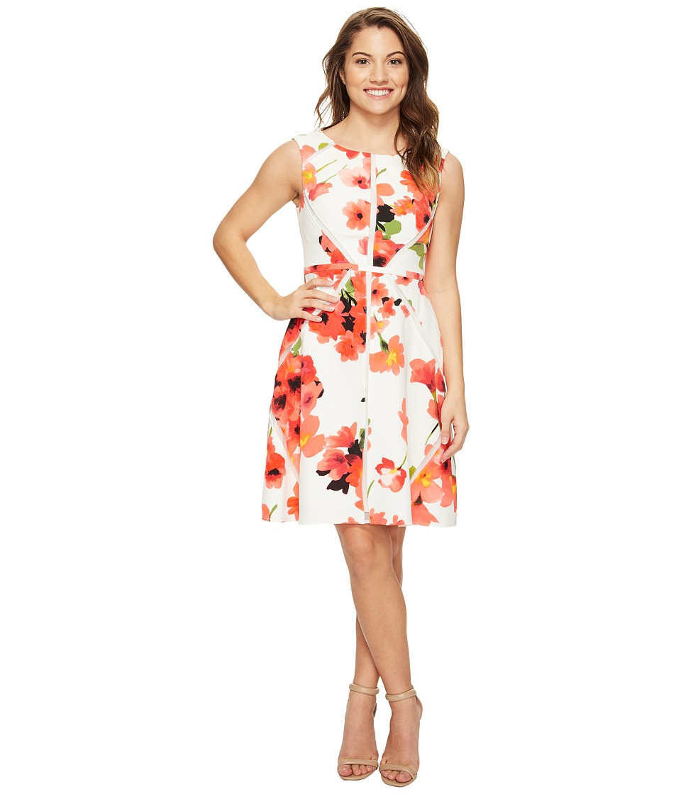 Adrianna Papell Petite Fit and Flare Splice Dress (Hibiscus) Women