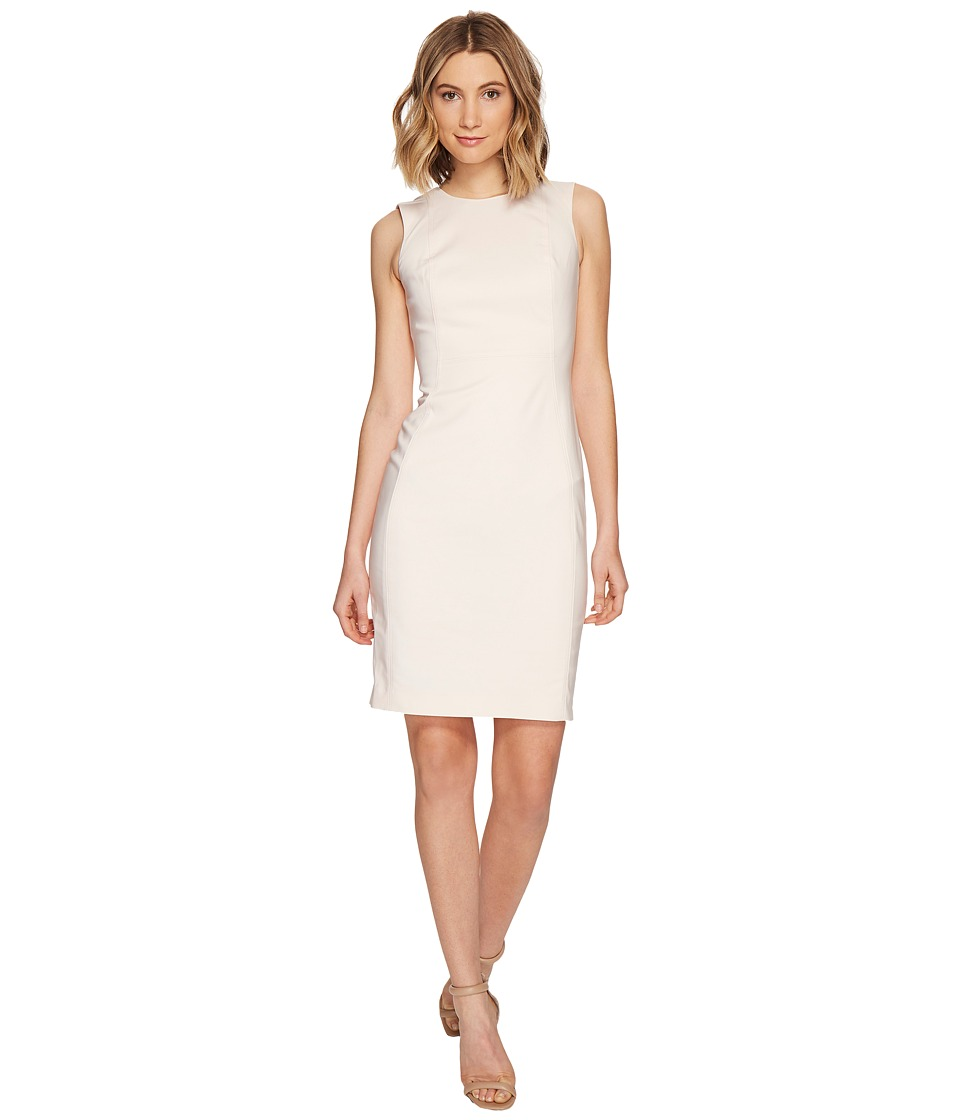 Calvin Klein - Cotton Princess Panel Sheath Dress (Blossom) Women's Dress
