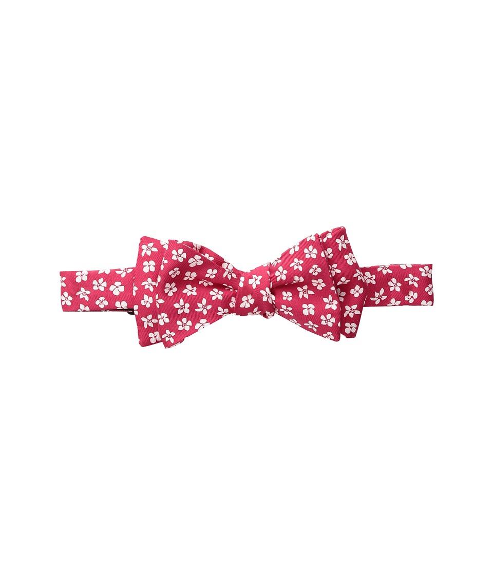 Vineyard Vines - Woodblock Printed Bow Tie (Rhubarb) Ties