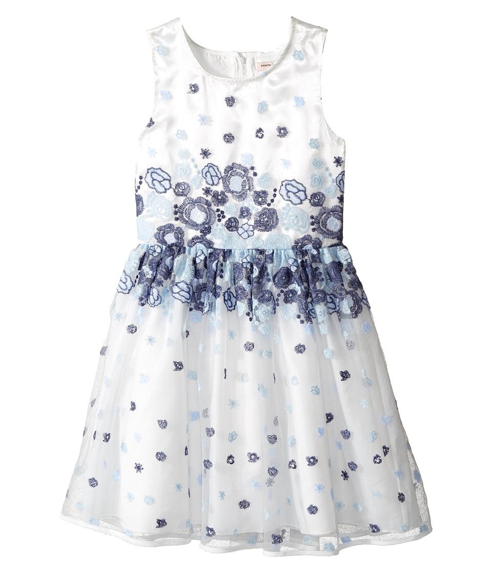Nanette Lepore Kids - Embroidered Blue Floral Dress (Little Kids/Big Kids) (White) Girl's Dress