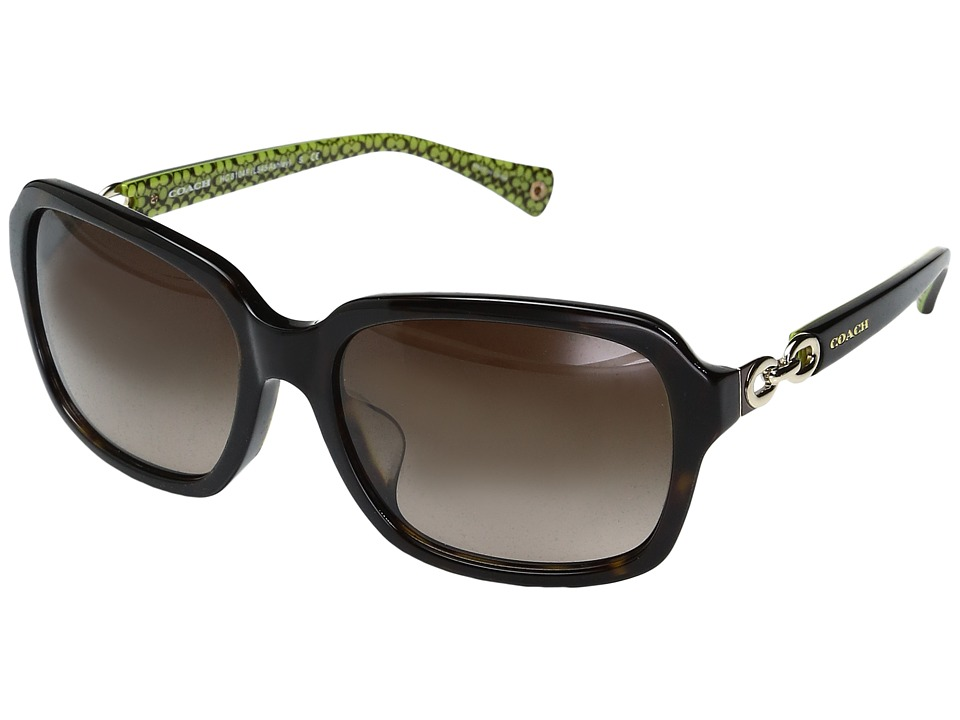 COACH - 0HC8104F (Dark Tortoise/Dark Tortoise Green Signature) Fashion Sunglasses