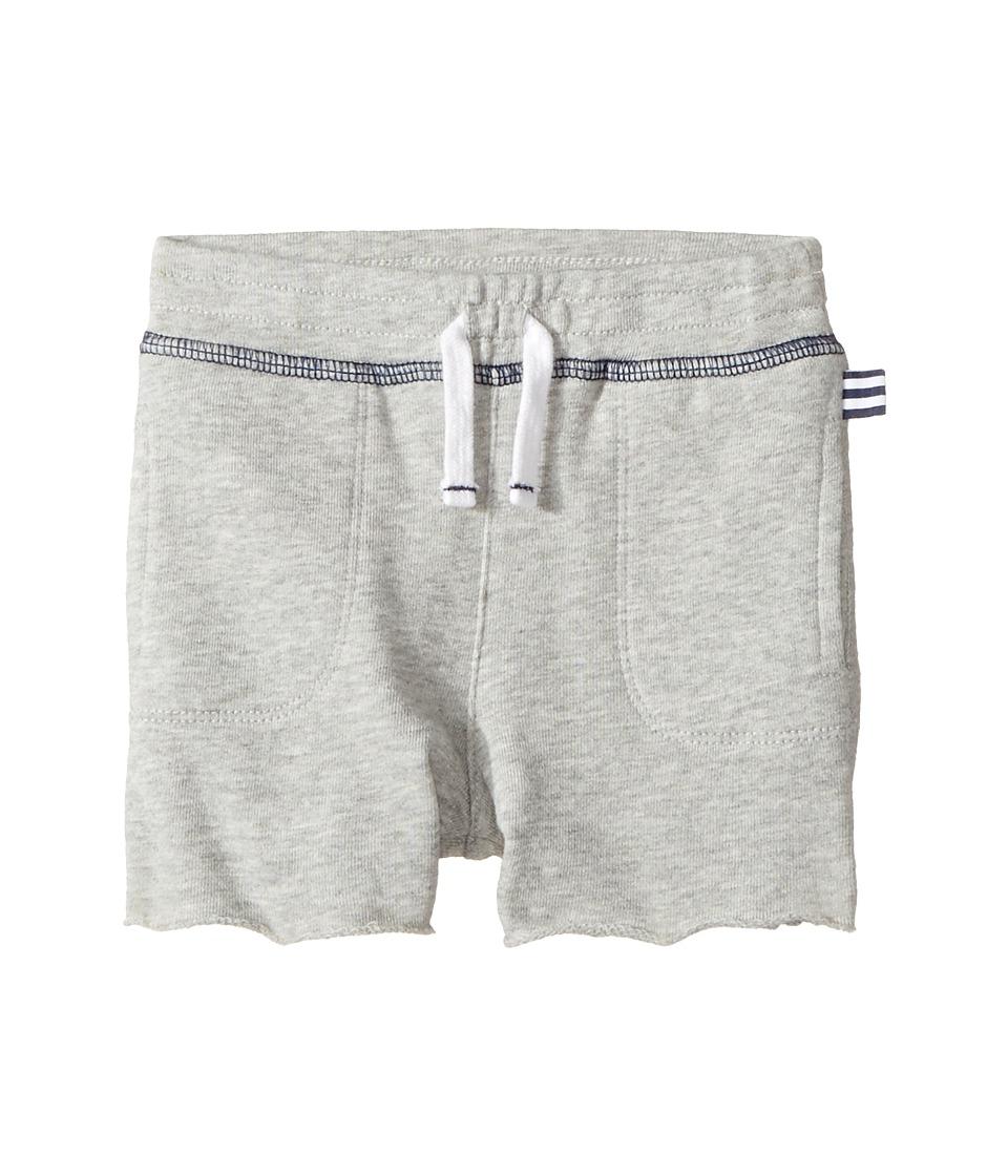 Splendid Littles - Always Shorts (Infant) (Grey Heather) Boy's Shorts