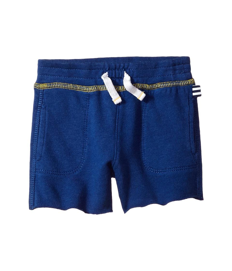 Splendid Littles - Always Shorts (Infant) (Blue) Boy's Shorts