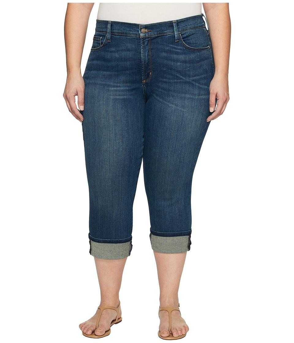 NYDJ Plus Size - Plus Size Dayla Wide Cuff Capris in Oak Hill (Oak Hill) Women's Jeans
