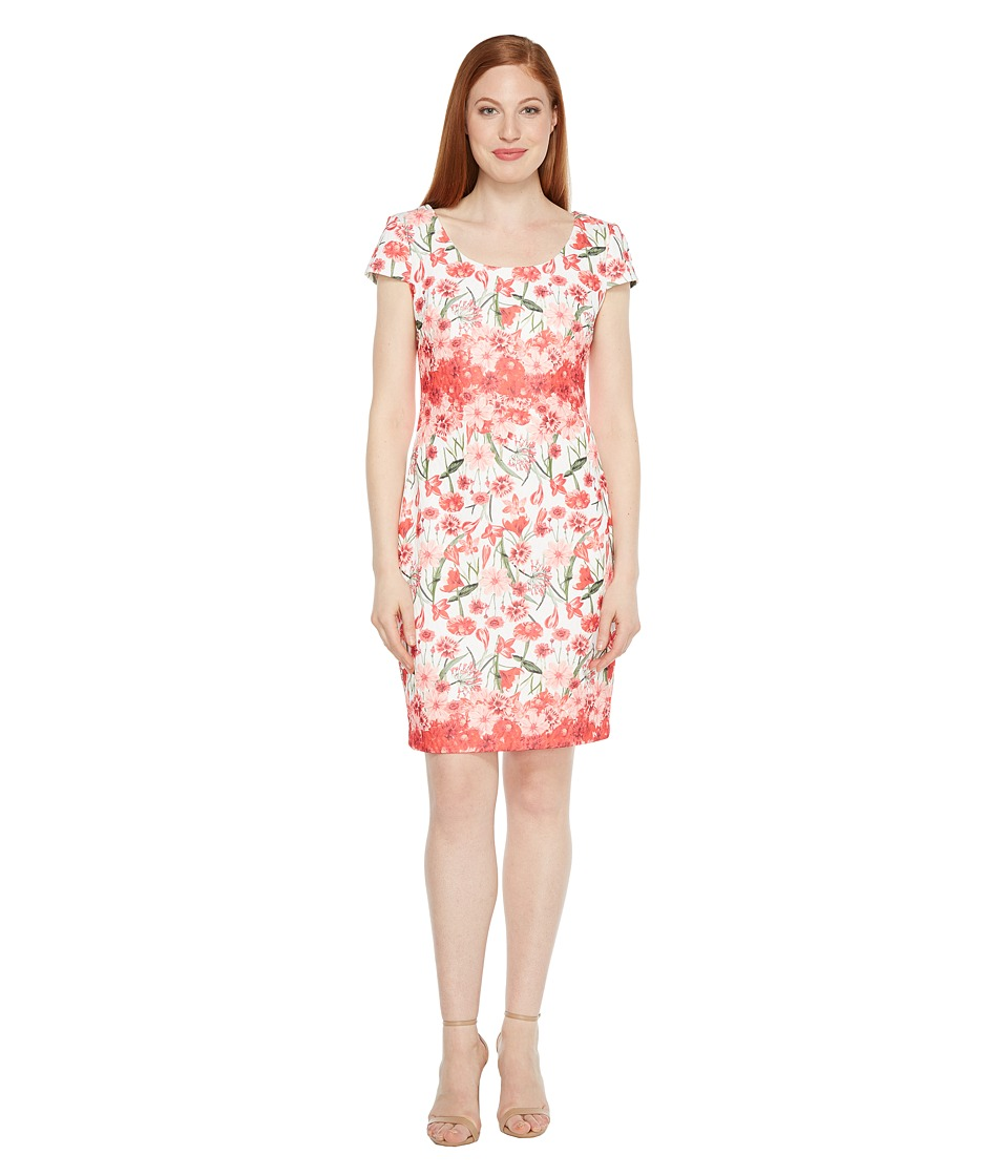 Sangria - Floral Printed Sheath with Cap Sleeve (Ivy Coral Reef) Women's Dress
