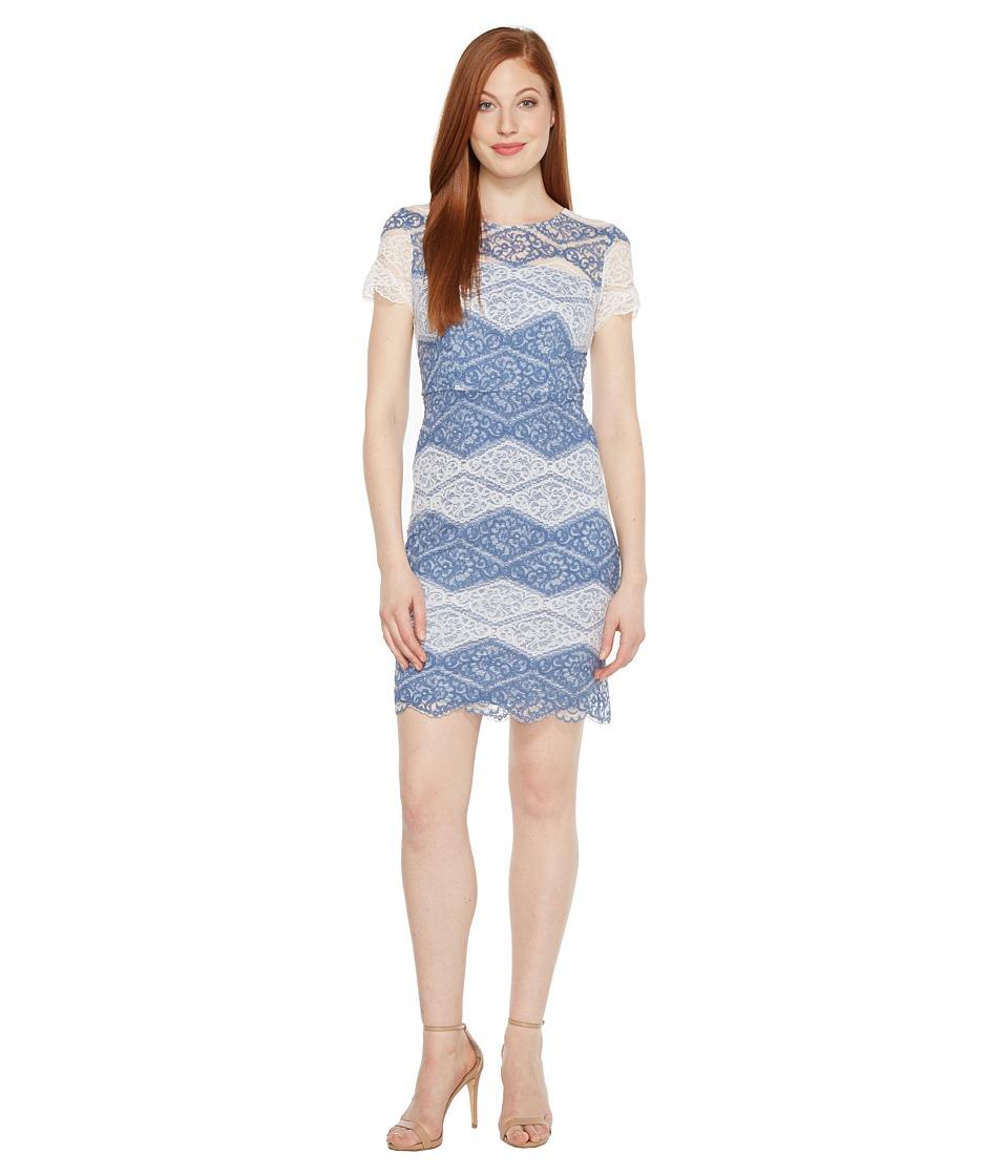 Sangria Short Sleeved Two-Toned Lace Sheath (Blue/Ivory) Women