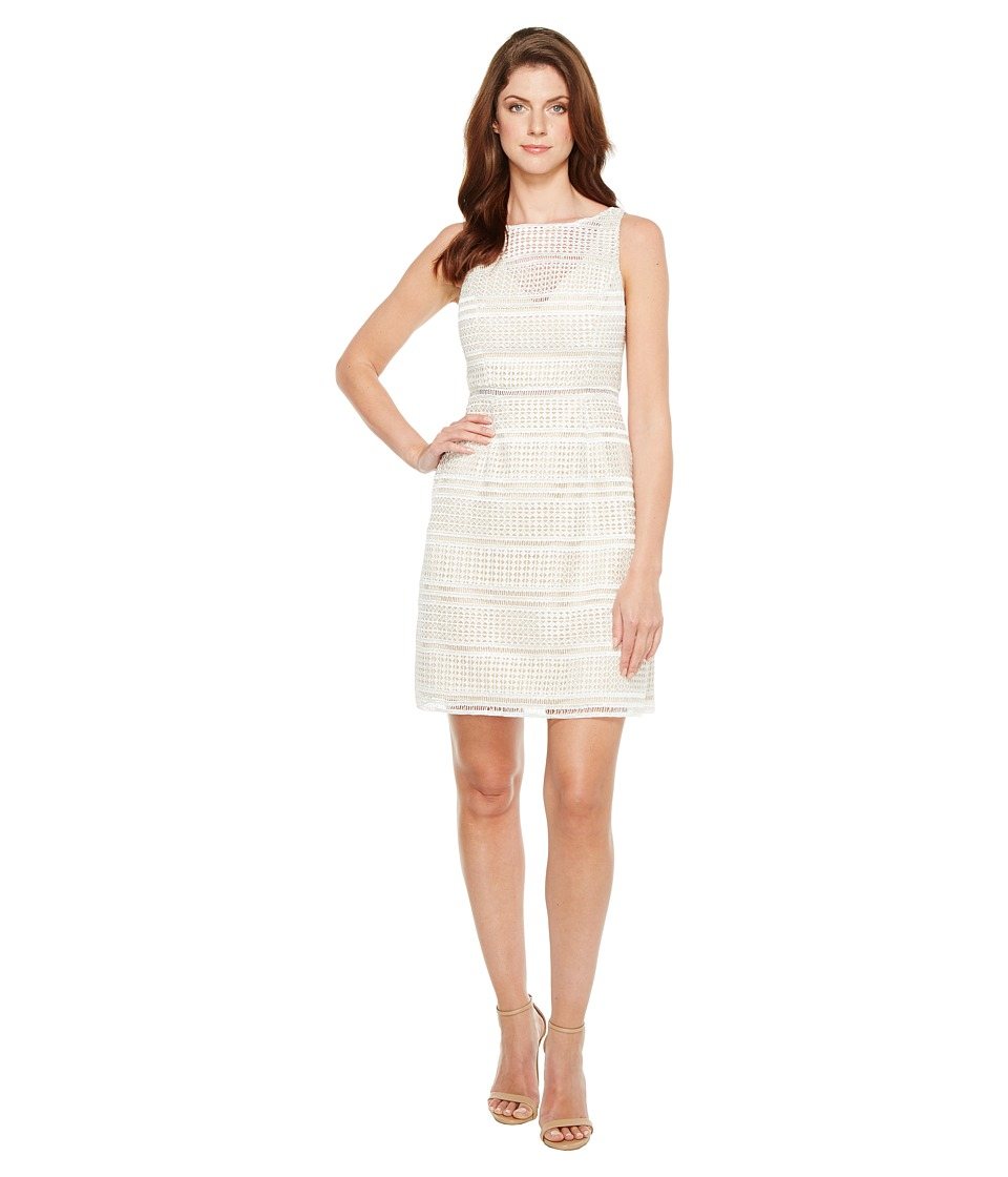 Adrianna Papell Eyelet Lace A-Line Skirt Dress (Ivory) Women