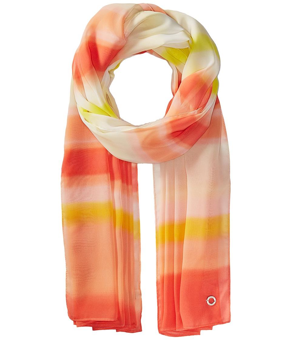 Calvin Klein - Ombre Dye Stripe Poly Chiffon (Porcelain Rose) Scarves