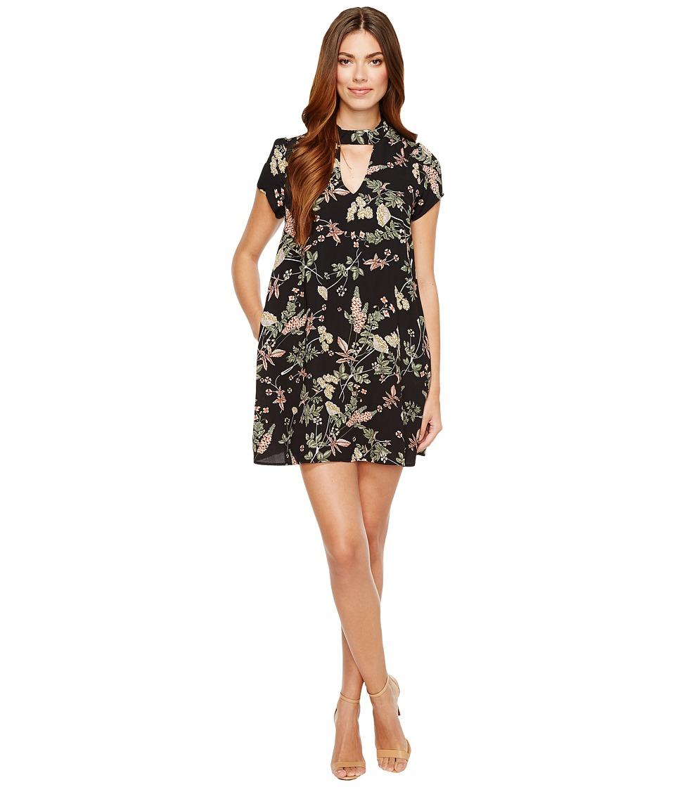 Brigitte Bailey Averie Short Sleeve Floral Dress (Black) Women