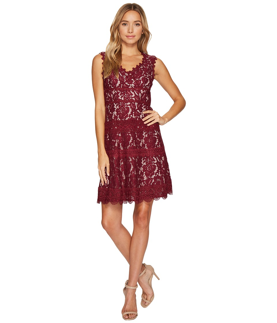 Adrianna Papell Cynthia Lace Fit and Flare Dress (Black Cherry/Blush) Women