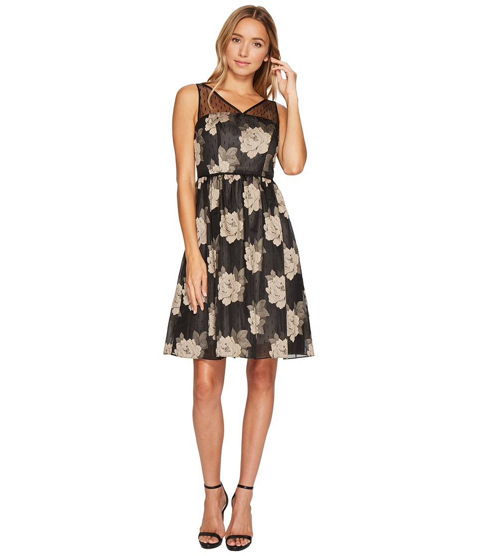Adrianna Papell - Rose Burnout Fit and Flare Dress (Black/Taupe) Women's Dress