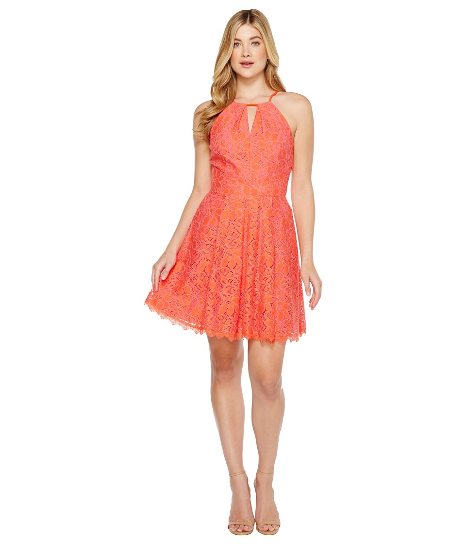 Adelyn Rae Renee Lace Fit and Flare Dress (Hot Pink/Orange) Women