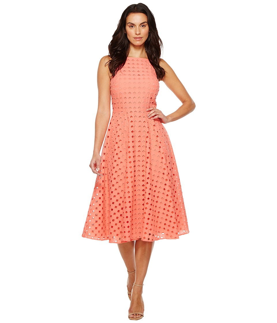 CeCe - Bella - Sleeveless Circle Eyelet (Coral Peony) Women's Dress