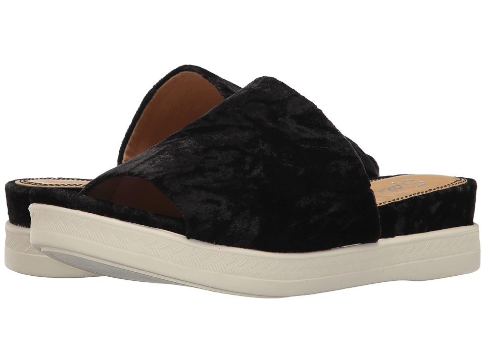 Splendid - Darla (Black) Women's Shoes