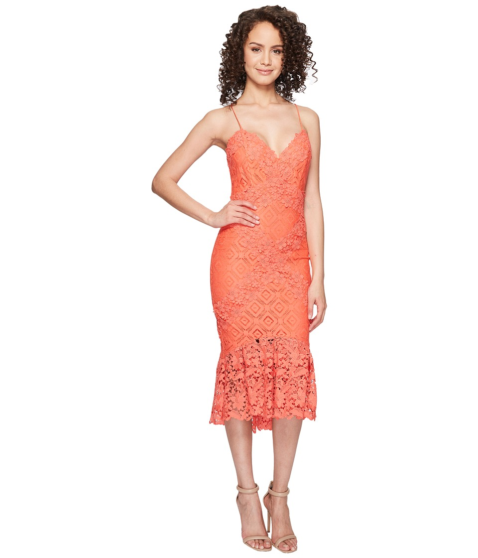 Nicole Miller - Leila Crochet Lace Cocktail Dress (Coral Reef) Women's Dress