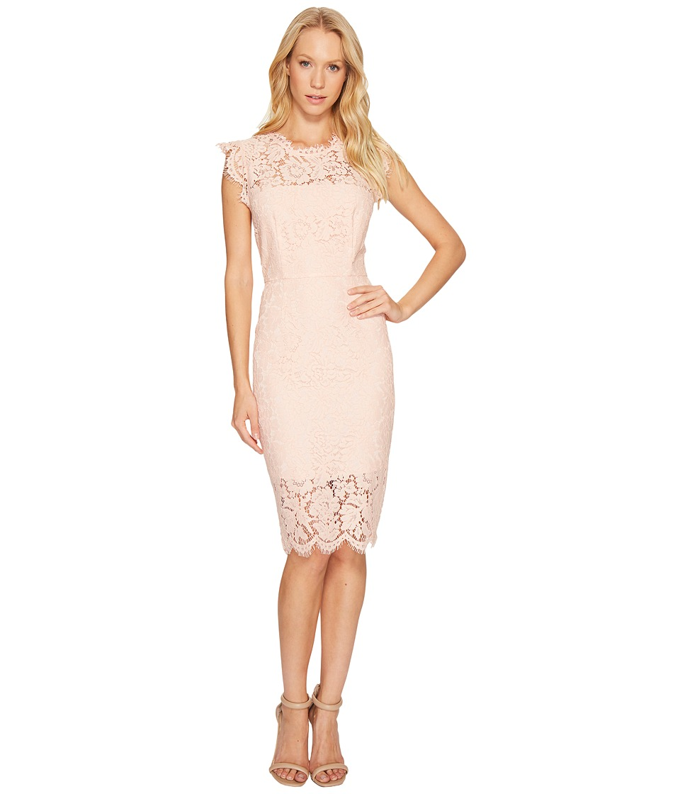 Rachel Zoe Suzette Dress (Rose) Women