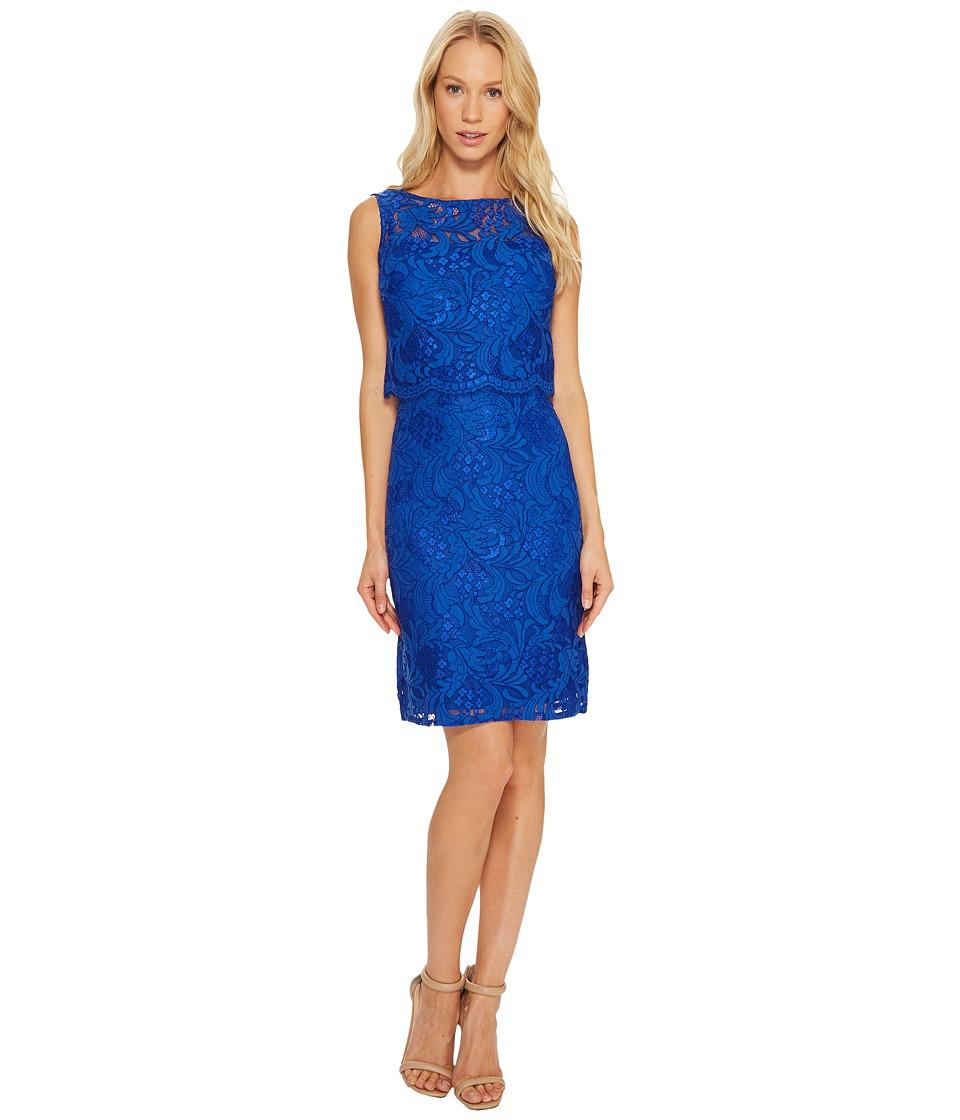 Ellen Tracy Lace Popover Dress (Cobalt) Women