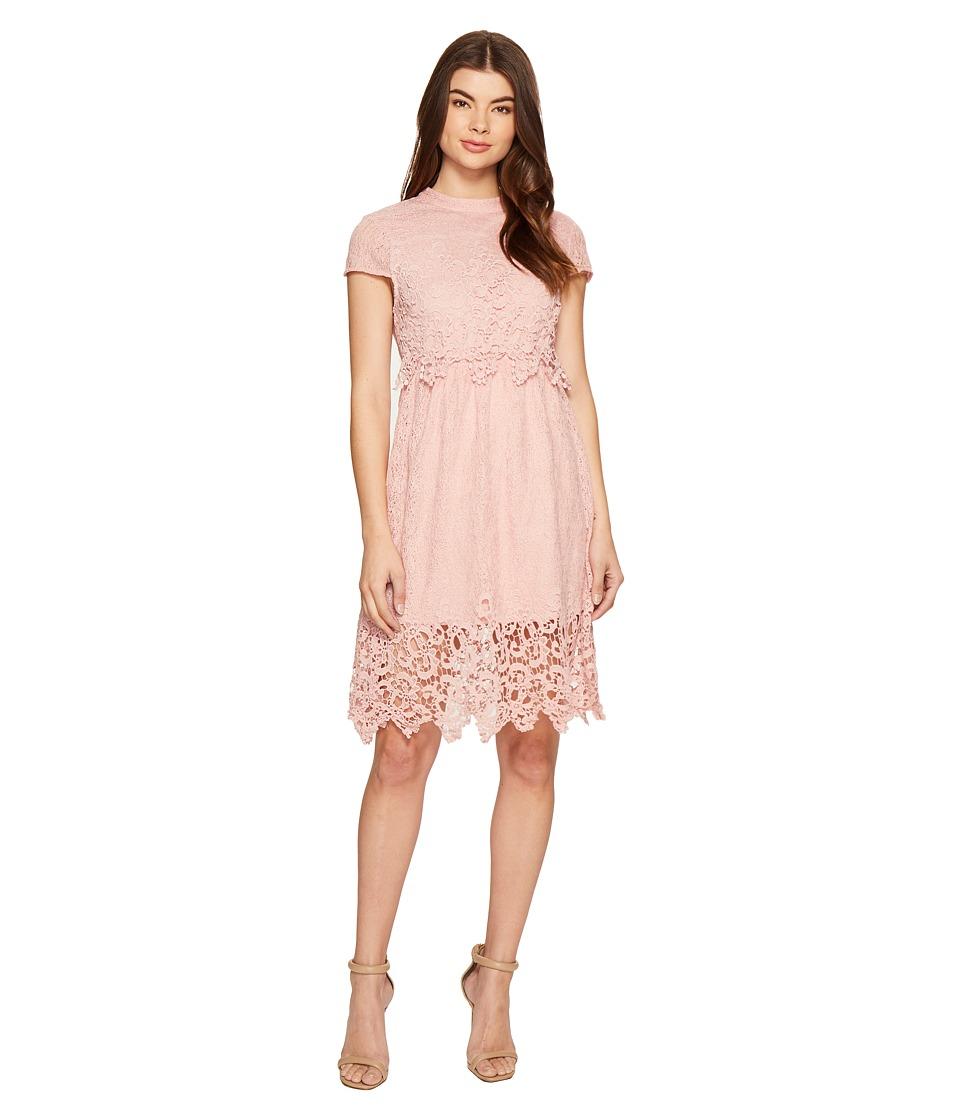 ROMEO & JULIET COUTURE - Cap Sleeve Open Back Lace Dress (Dusty Pink) Women's Dress