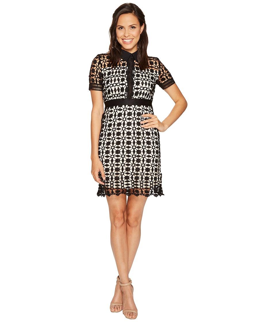 ROMEO & JULIET COUTURE - Lace Short Sleeve Dress (Black/Nude) Women's Dress