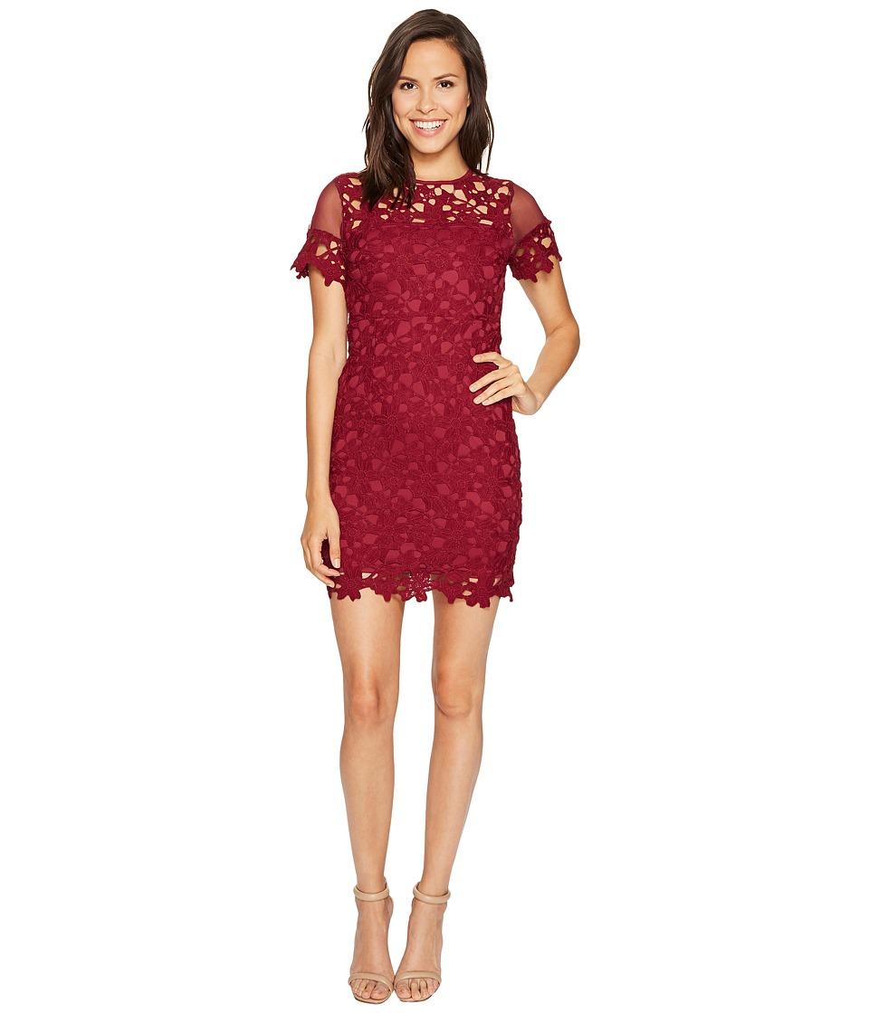 ROMEO & JULIET COUTURE - Short Sleeve Mesh Lace Dress (Berry) Women's Dress