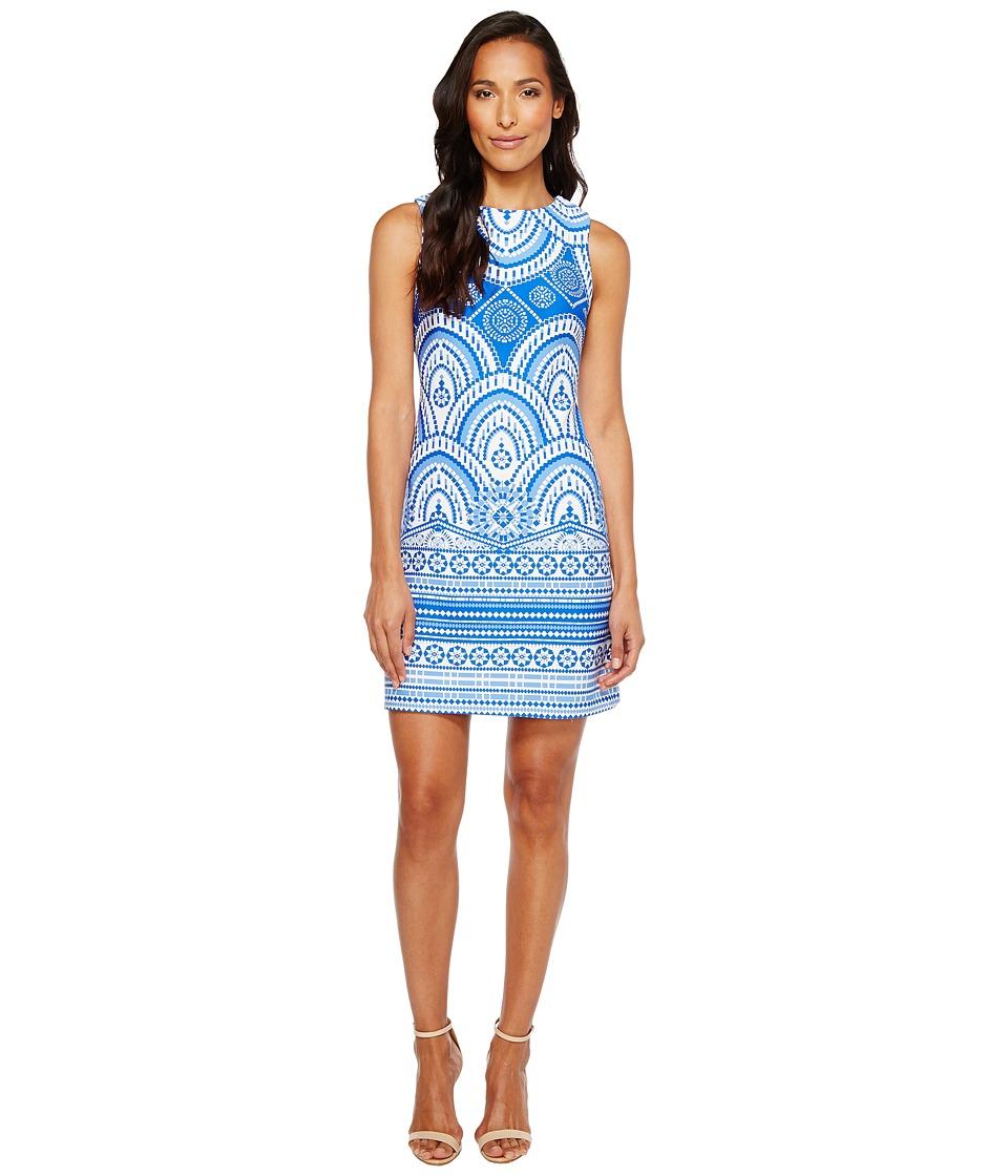 Taylor - Printed Scuba Sheath Dress (Royal/White) Women's Dress