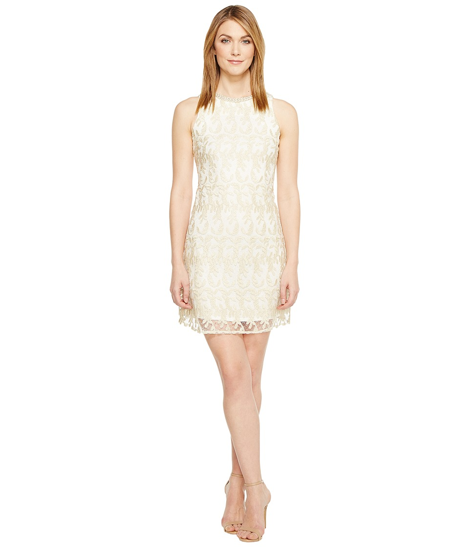 Taylor - Braided Neck Lace Shimmer Shift (Gold/Ivory) Women's Dress