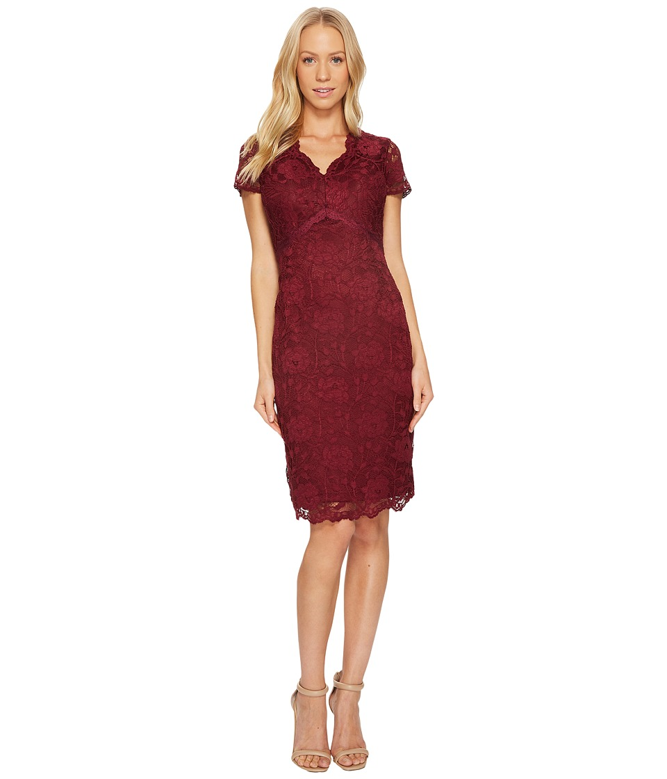 Ellen Tracy Lace Dress with Short Sleeves and V-Neck (Merlot) Women