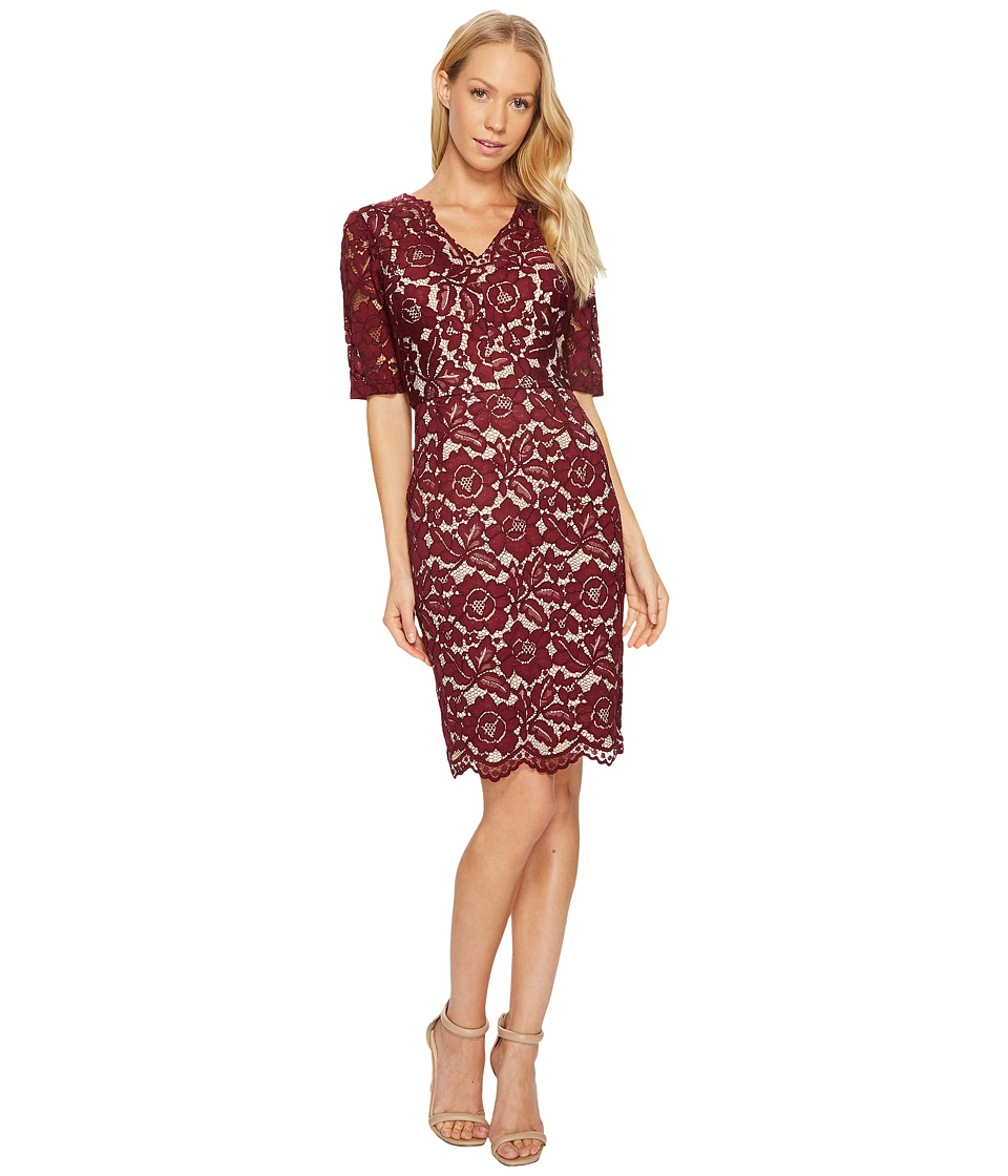Ellen Tracy - Elbow Sleeved Lace Dress with V-Neck and Nude Lining (Merlot) Women's Dress