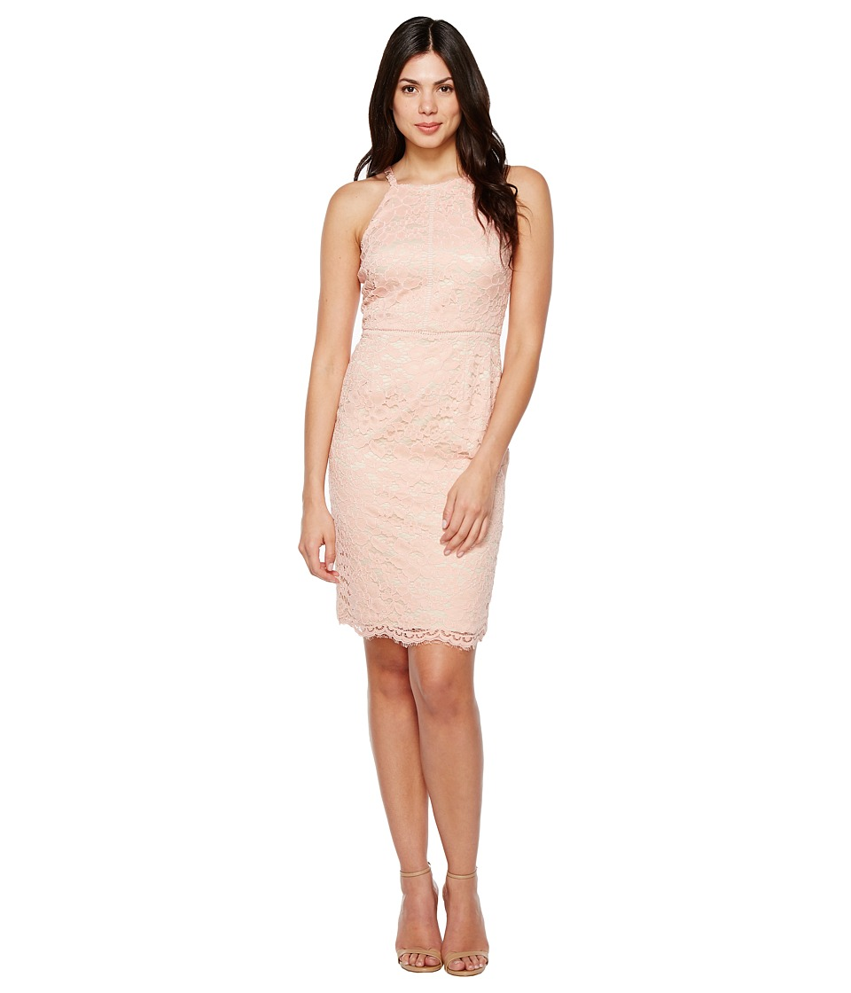 Vince Camuto - Lace Bodycon Dress with Trim (Peach) Women's Dress
