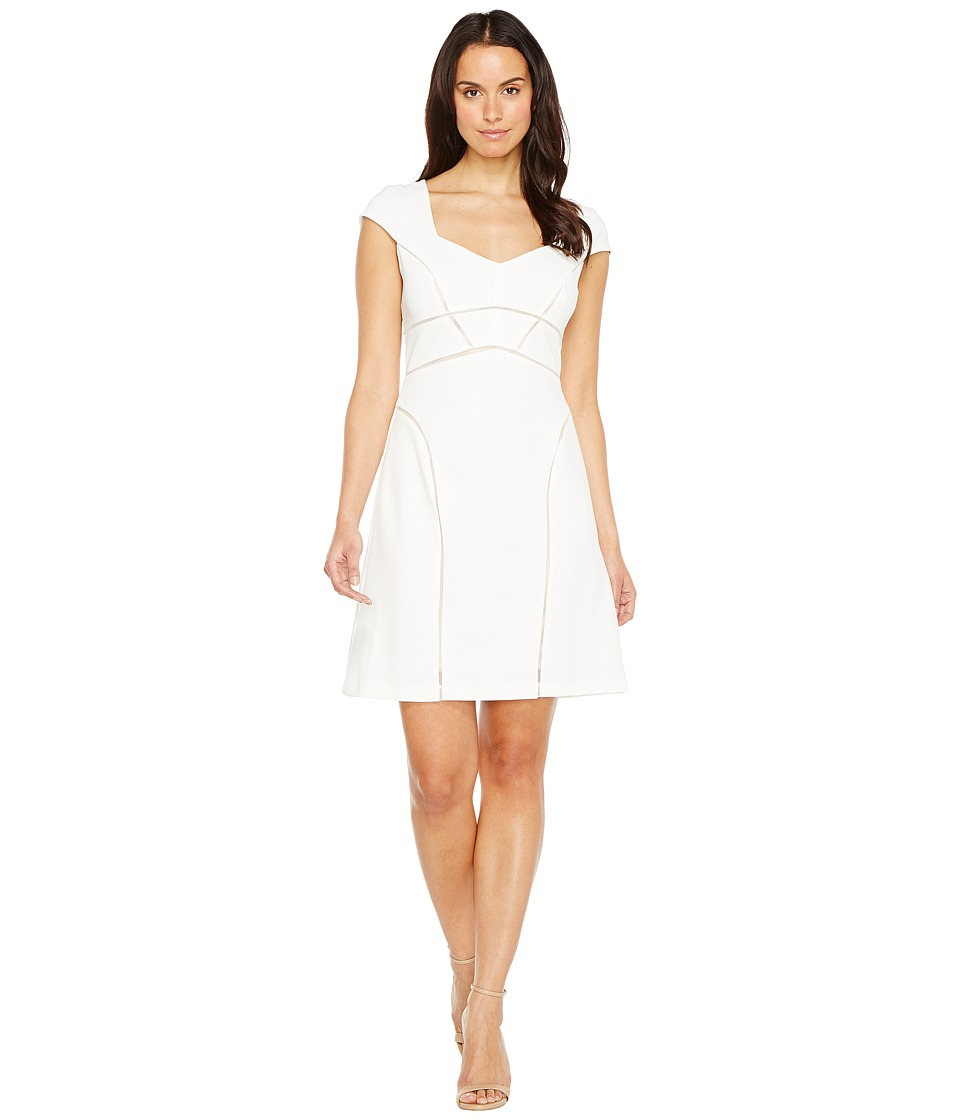 Adrianna Papell - Knit Crepe Netting Insert A-Line Dress (Ivory/Pale Pink) Women's Dress