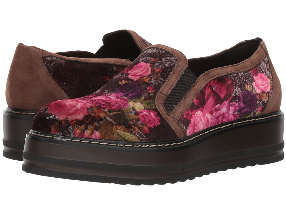 Summit by White Mountain Belton (Brown Velvet) Women