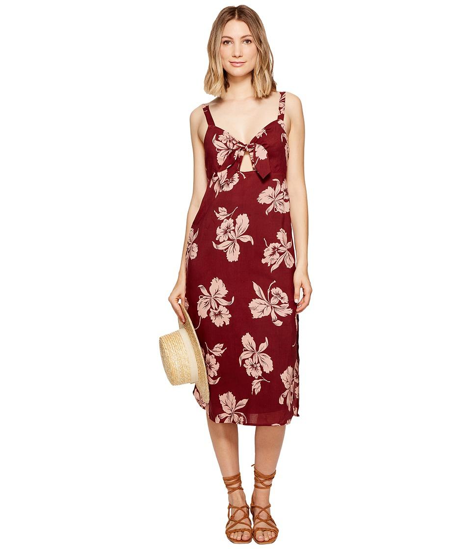 Amuse Society Maude Dress (Port) Women