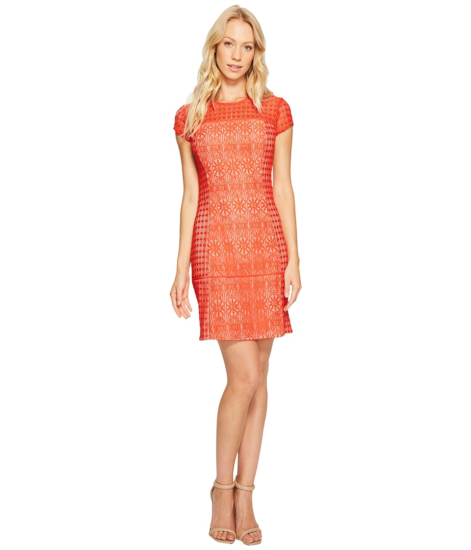 Jessica Simpson - Short Sleeve Lace Dress (Red) Women's Dress