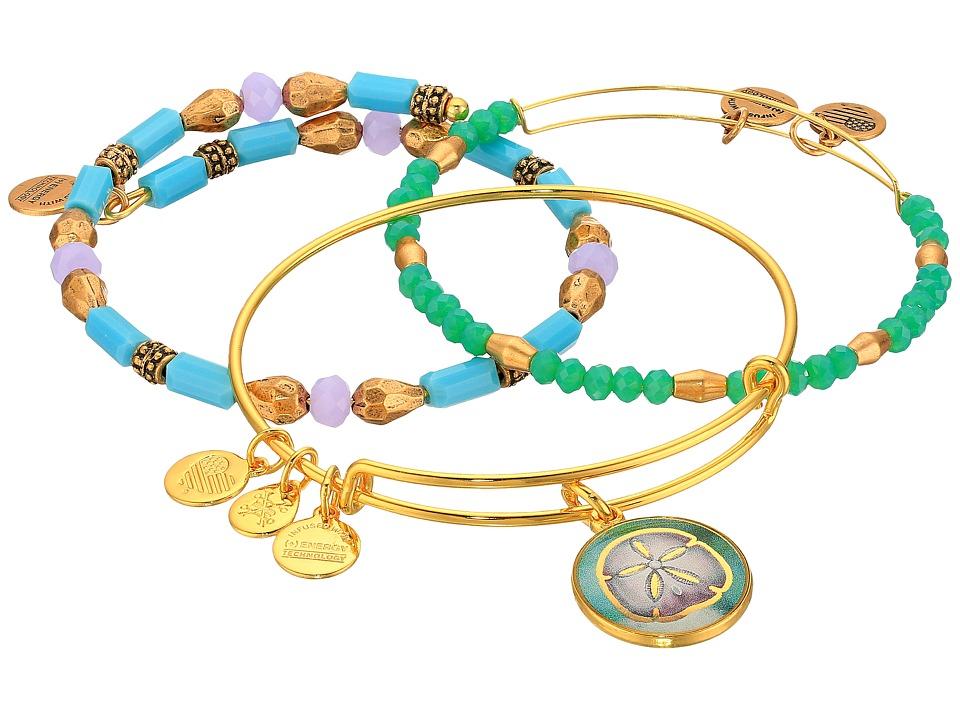 Alex and Ani - Marina Sand Dollar Bracelet Set of 3 (Gold) Bracelet