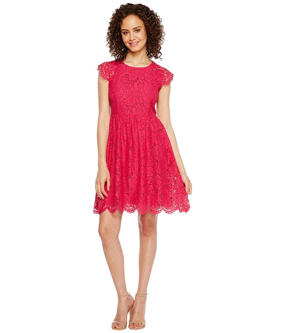 Jessica Simpson Lace Fit and Flare Dress JS7A9597 (Azalea) Women
