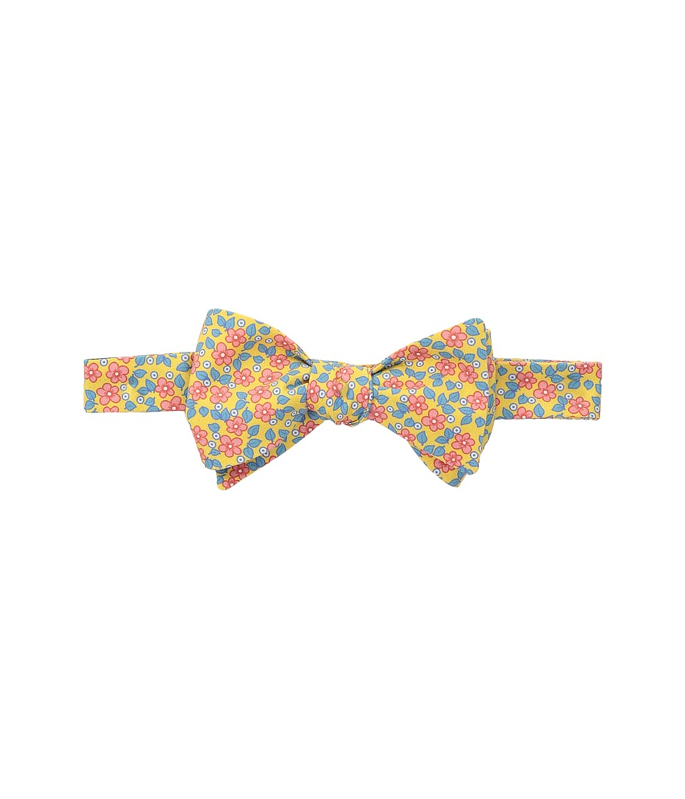 Ted Baker - Caraby Floral (Yellow) Ties