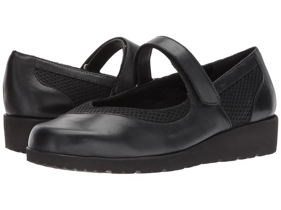 Walking Cradles - Finley (Black Softee/Black) Women's Shoes