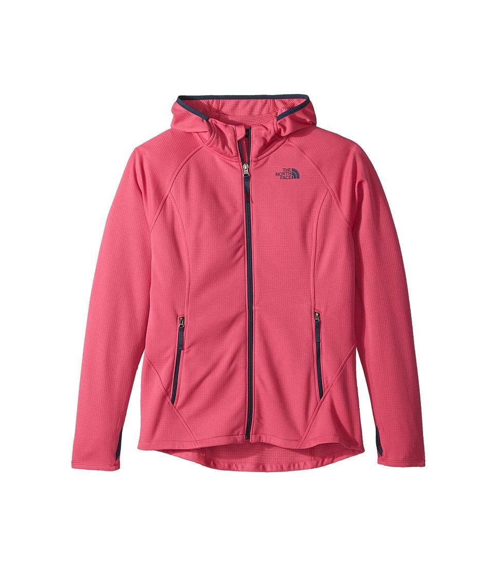 The North Face Kids Mid Cloud Fleece Hoodie (Little Kids/Big Kids) (Petticoat Pink/Blue Wing Teal) Girl
