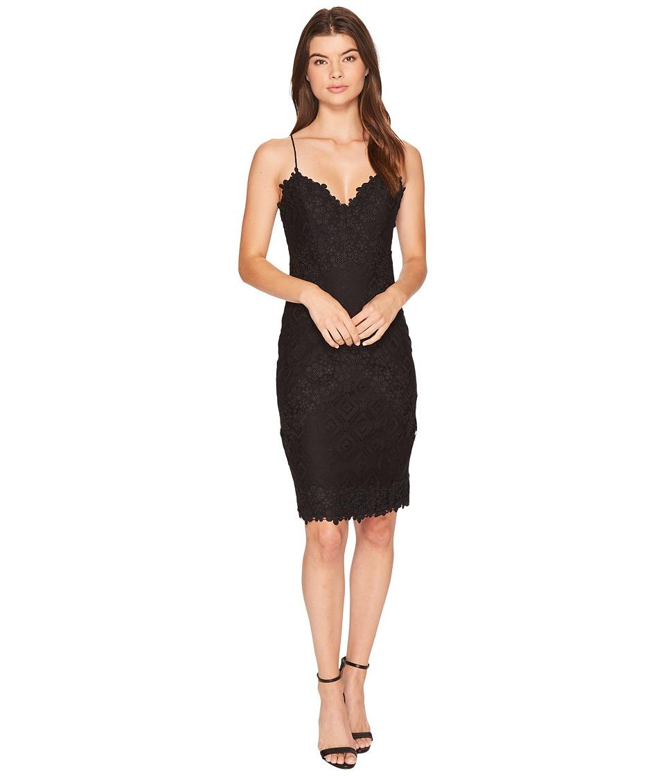 Nicole Miller Leela Lace Mini Dress (Black) Women