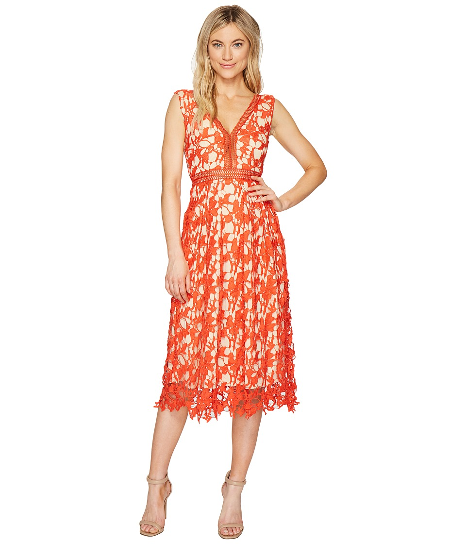 ROMEO & JULIET COUTURE - Midi Length Lace Dress with Nude Liner (Mandarin) Women's Dress