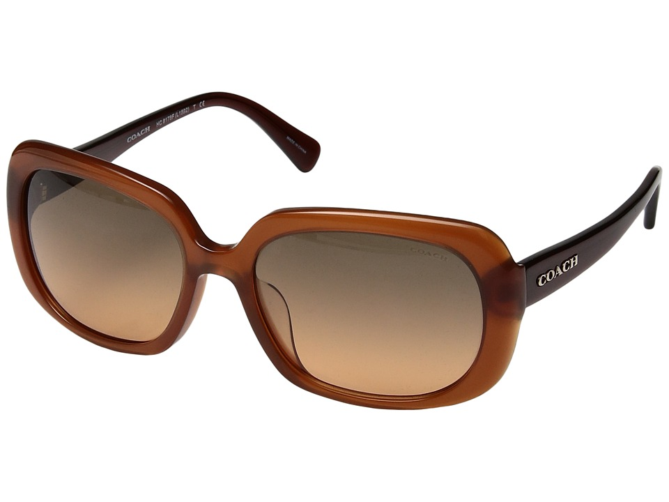 COACH - 0HC8178F (Brown) Fashion Sunglasses