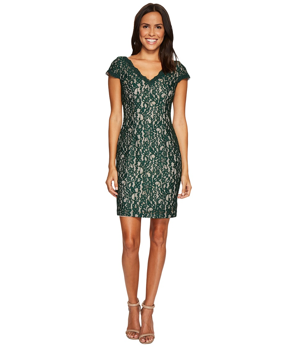 Adrianna Papell Aubrey Lace Sheath Dress (Hunter/Bisque) Women